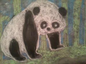 B14's Giant Panda