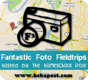 fantastic fieldtrip button
