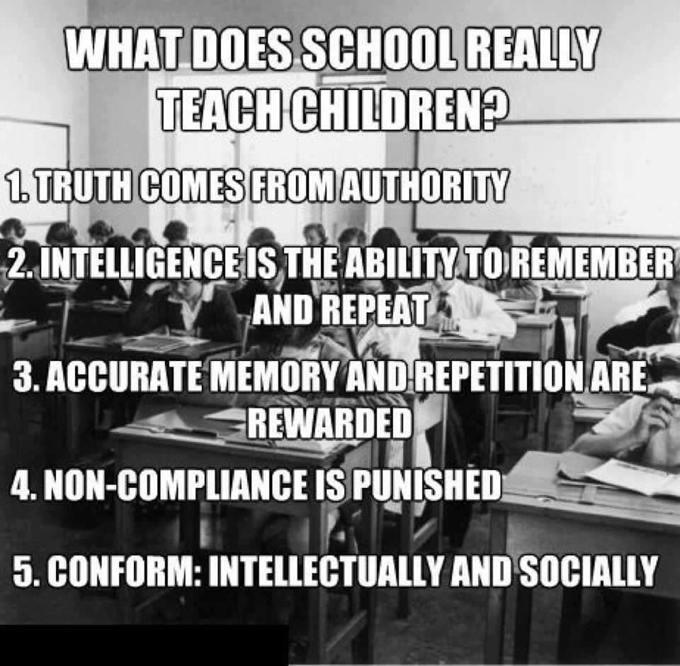 Image result for homeschooling facts