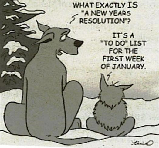 new-years-resolution-cartoon