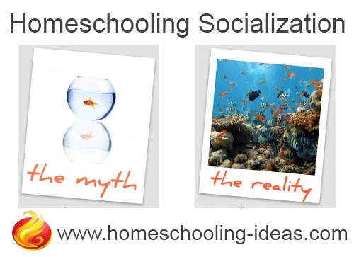 homeschool-socialization-myth-reality