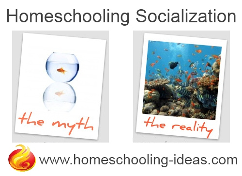 homeschool-socialization-myth-reality